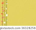 梅 白梅花 日本梅子 36328256