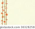 梅花 梅 日本梅子 36328258