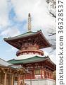 단풍을 맞이한 나리 타산 신 쇼우지 36328537