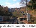 station, train, railroad 36331860