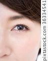瞳孔 36334541