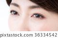 瞳孔 36334542