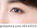 瞳孔 36334543