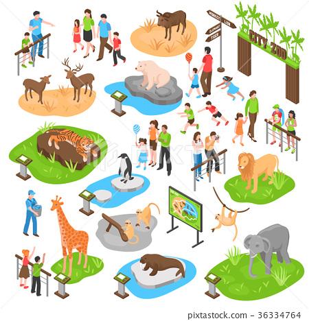 Zoo Isometric Big Set 36334764