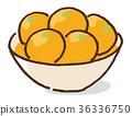 金橘(中国橘子) 脯 甜蜜的 36336750
