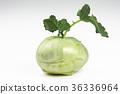 Fresh kohlrabi turnip isolated on white background 36336964