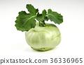 Fresh kohlrabi turnip isolated on white background 36336965