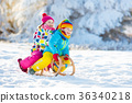 Kids play in snow. Winter sleigh ride for children 36340218