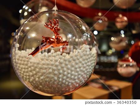 雪中麋鹿水晶球 36340350