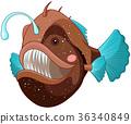 Angler Fish 36340849