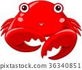 Crab 36340851