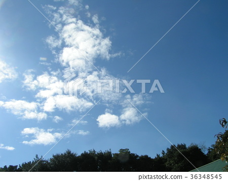 푸른 하늘, 파란 하늘, 청색 36348545