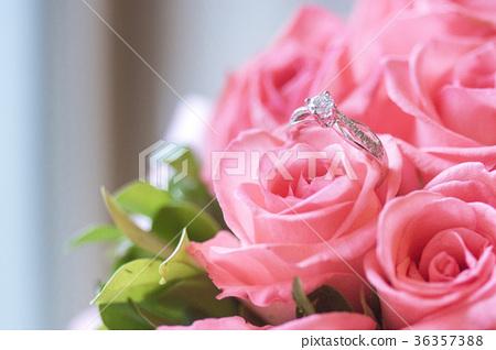 鑽戒與玫瑰 36357388