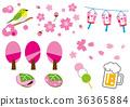 樱花观察例证集合 36365884