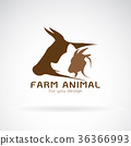 Vector group of animal farm label. Cow,pig,chicken 36366993