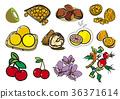 kiwi, kiwis, chestnut 36371614