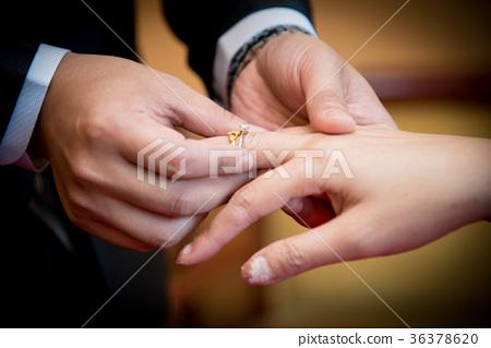 반지를 끼고있는 결혼 세관 36378620