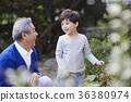 할아버지,손자,함께함,행복 36380974