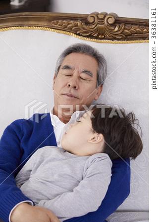 할아버지,손자,잠 36381161