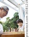 가족, 교육, 나무 36381219