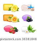 漿果 橙色 橘子 36381848