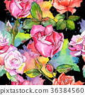 flower, blossom, watercolor 36384560