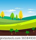 farm, field, rural 36384930
