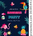 夏威夷 问候 鸟儿 36385441