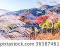 北亞 東亞 日本 36387461