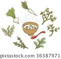 七种草药 荠菜 萝卜 36387971