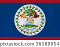 Belize waving flag 36389054
