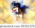 Dog and abstract background, Beautiful color spots 36391374