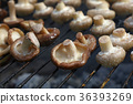 White and shiitake mushrooms on grill 36393269