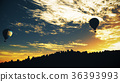 Hot Air Balloons Lush Natural Wilderness Jungle 36393993