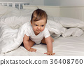 bed, blanket, baby 36408760