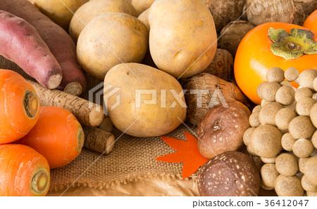 가을 야채와 과일 제철 가을의 미각 고구마 버섯 다양한 여러 종류 36412047