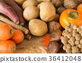 가을 야채와 과일 제철 가을의 미각 고구마 버섯 다양한 여러 종류 36412048