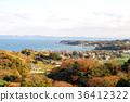 풍경, 바다, 가을 36412322
