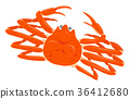 snow crab crabs 36412680