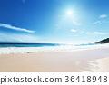 beach of Mahe island, Seychelles 36418948