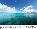 perfect sky and tropical ocean 36418952