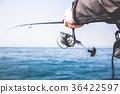 ตกปลา,มหาสมุทร,กีฬา 36422597
