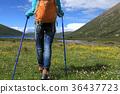 female hiker hiking 36437723