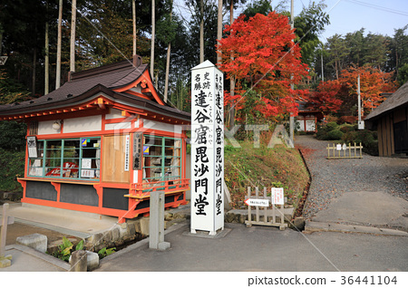 Autumn leaves 01 of Tatsuya Caves Bishamondo 36441104