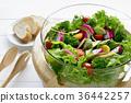 多彩的蔬菜沙拉 36442257
