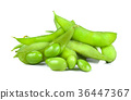 soybeans on white background 36447367