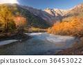 Kamikochi in Autumn 36453022
