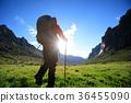 Hiking female Trekking 36455090