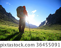 Hiking sunshine female 36455091