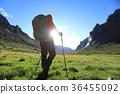 Hiking sunshine female 36455092
